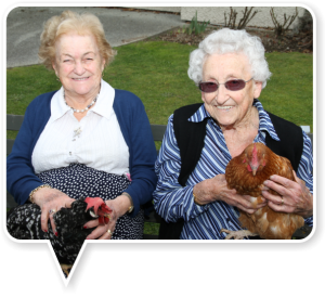 Residents and hens at Wallingford Home